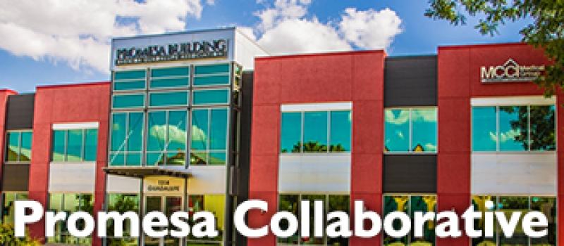 promesa-collaborative